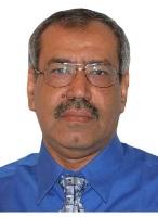 Dr Ezz Hassan Sayed Abdelfattah
