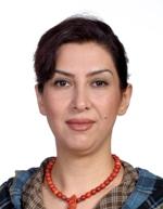 Dr Maryam Karami