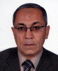 Professor Baher Effat