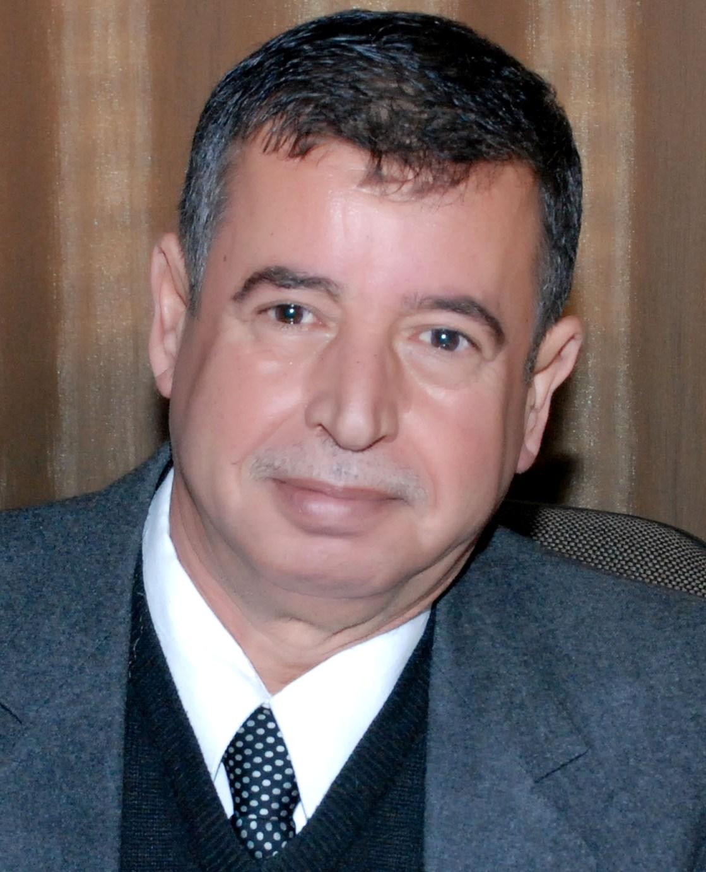 Professor Ahmad Mohammad Khalil
