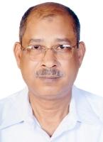 Alaa E  Ahmed
