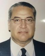Bakr M Nour