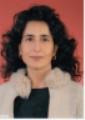 Assoc.Professor Hulya Cakmur